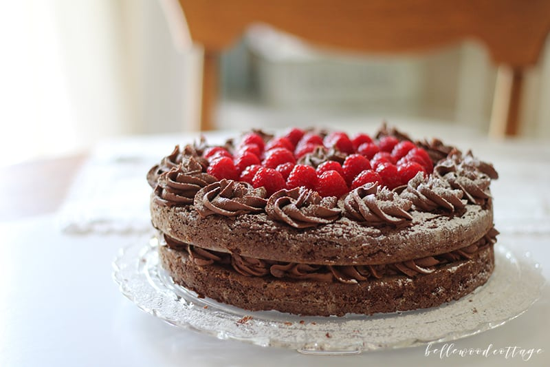 gluten free chocolate brownie fudge cake recipe