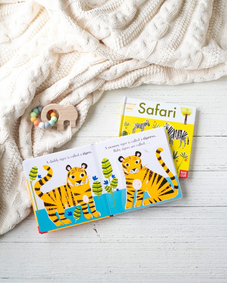 Board Book Review | Animal Families Board Books