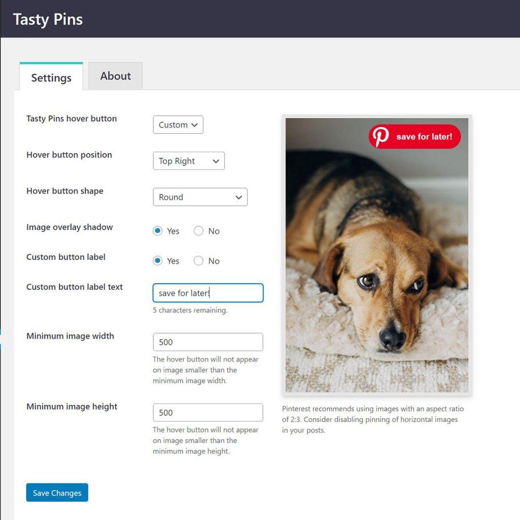 Tasty Pins WordPress Plugin hover button customization dialogue.