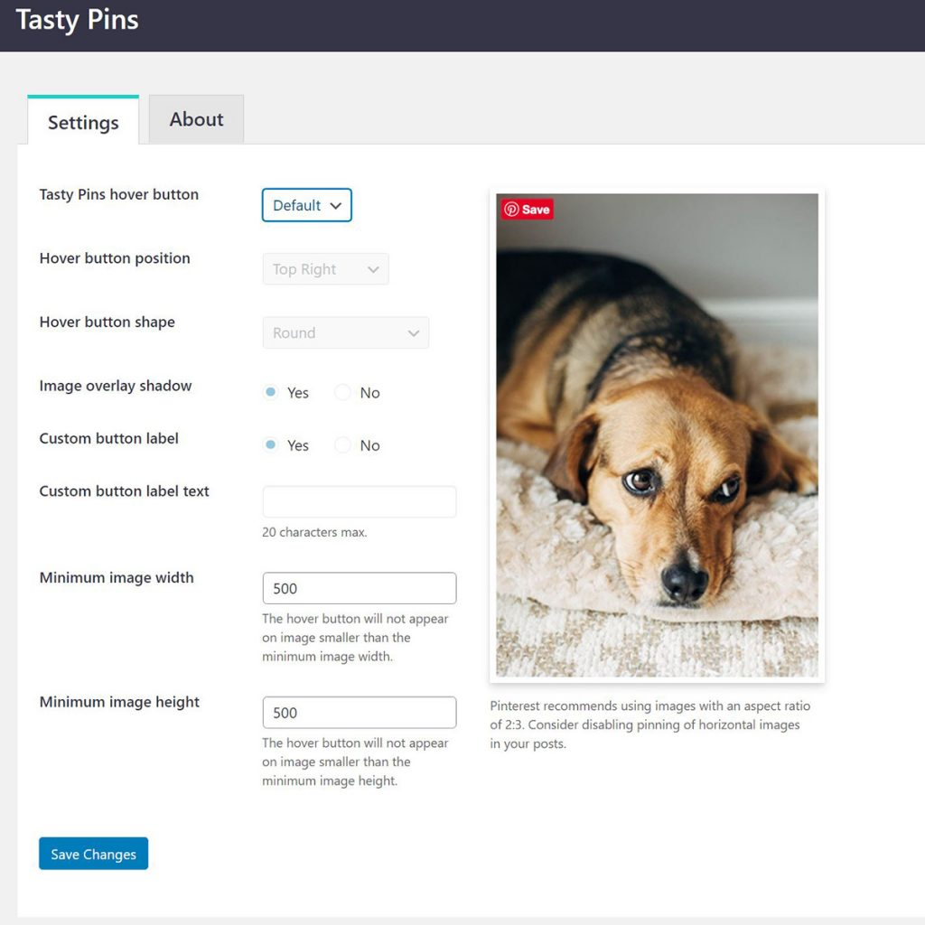 A screenshot of the Tasty Pins WordPress Plugin hover button customization dialogue.