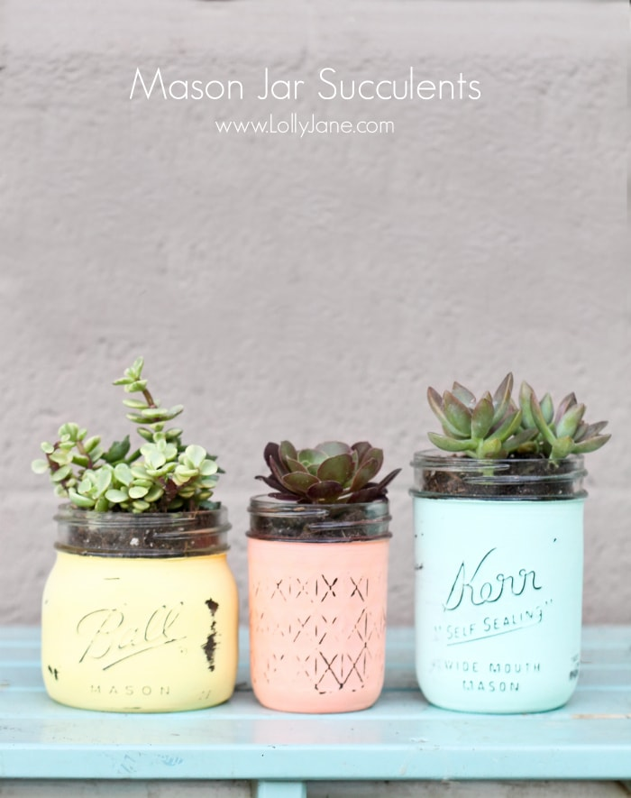 Three colorful painted mason jars in row with succulents planted inside.