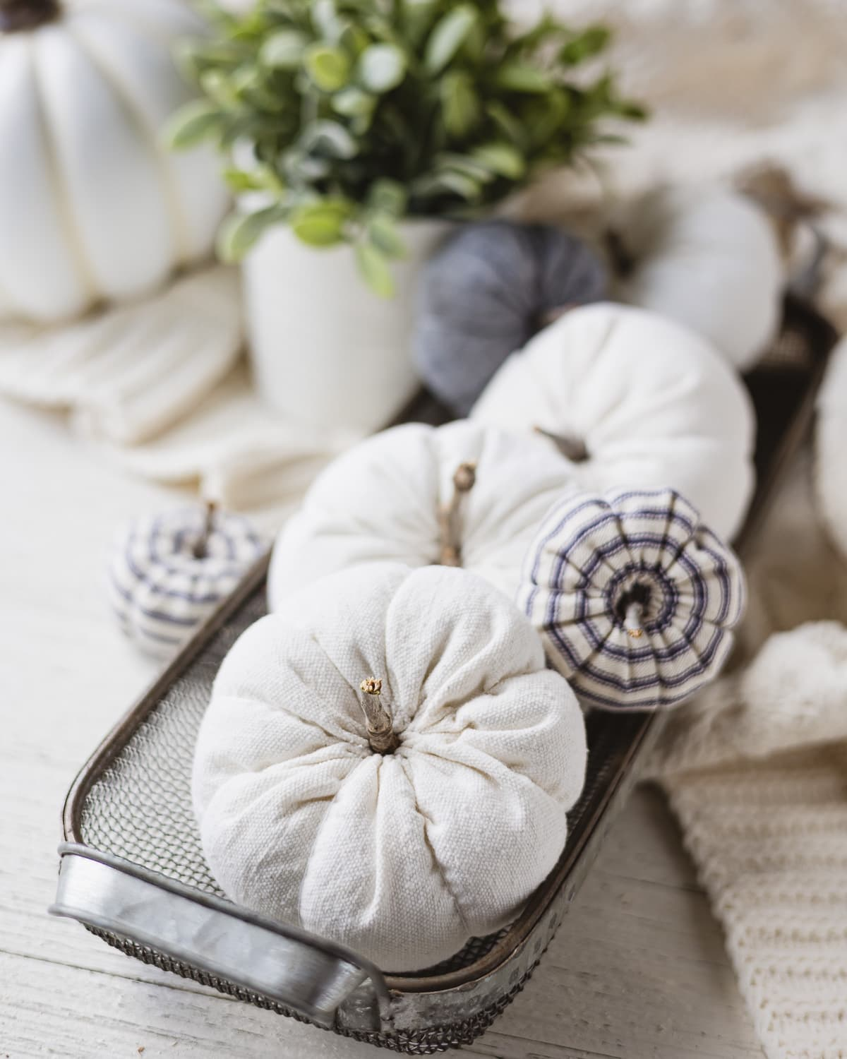 Drop cloth and ticking stripe pumpkins in a wire basket.
