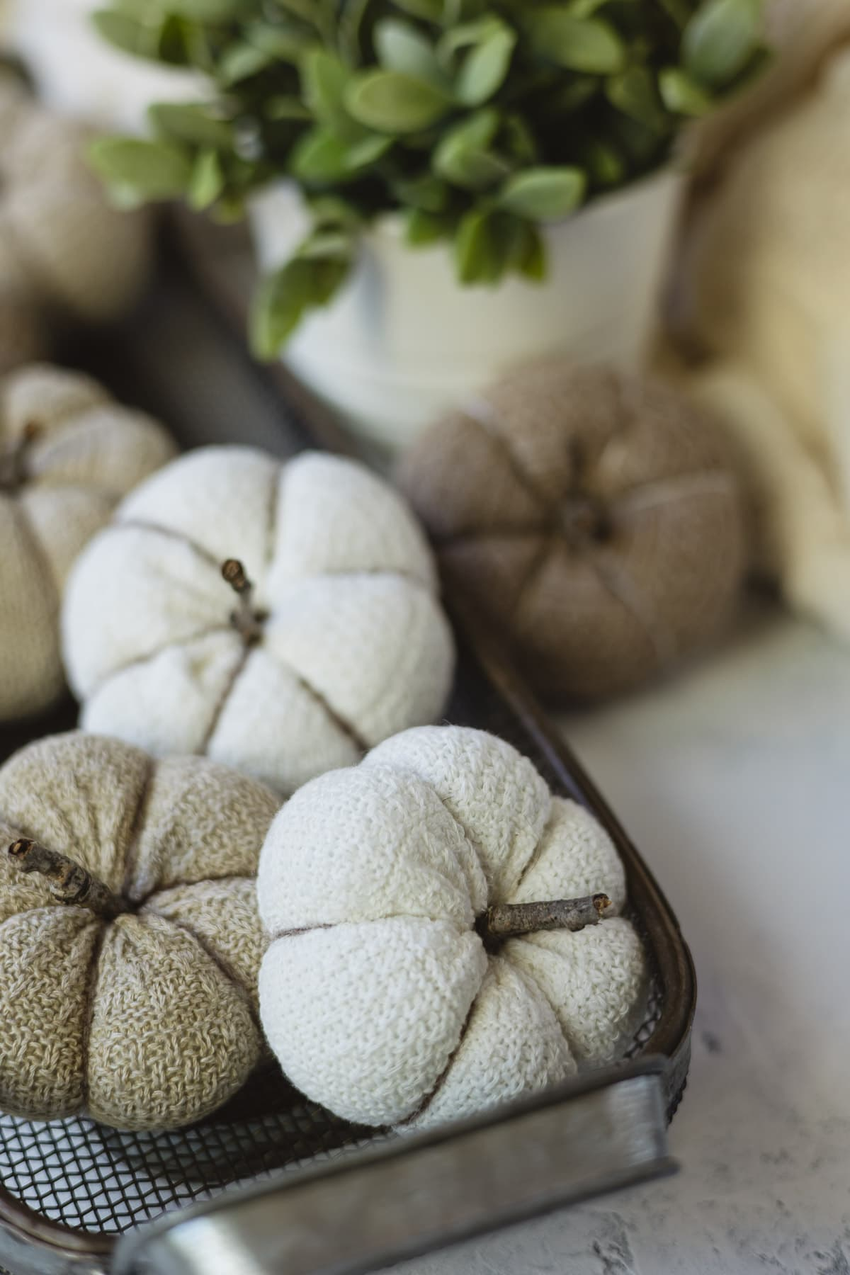 Brown and white DIY sock pumpkins arranged in a decorative basket.